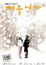 冬日恋歌海报
